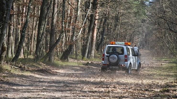 """RPO apeluje o zmianę prawa. """"Strażnicy leśni nie odpowiadają za przekroczenie uprawnień"""""""