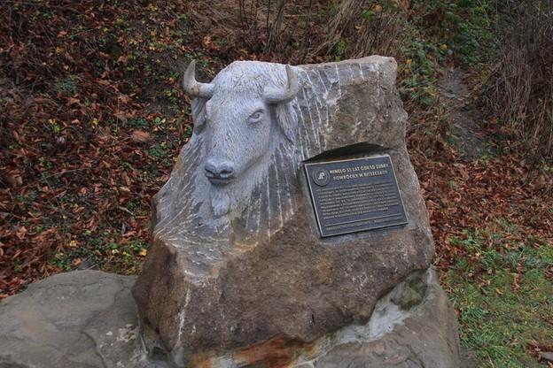 Pomnik żubra ustawiony jest niedaleko Zagrody Pokazowej Żubrów